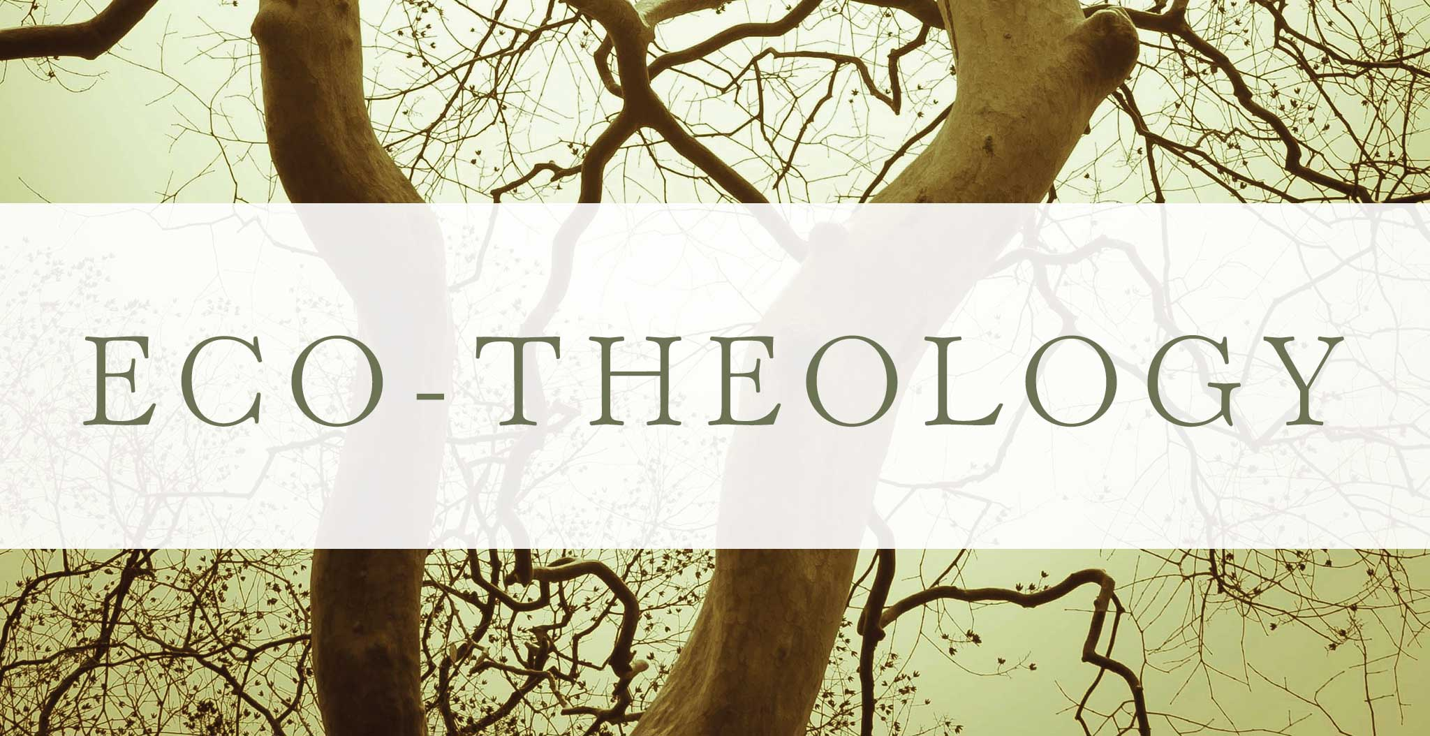 Course Image  TH30605 Ecological Theology